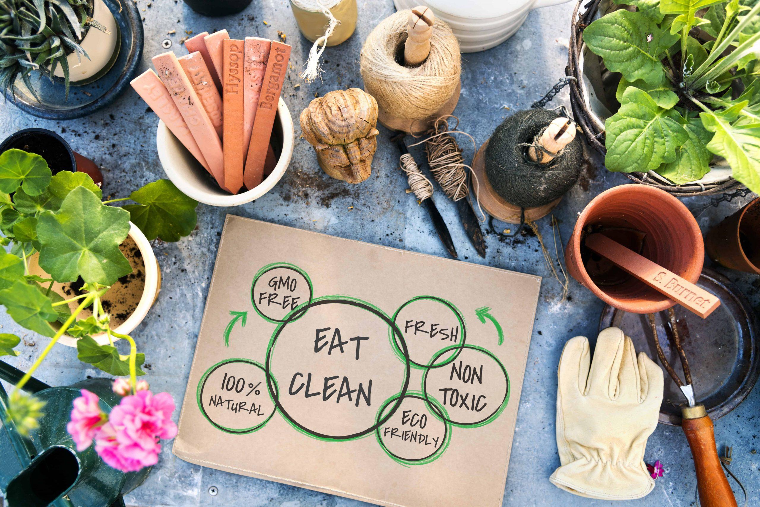 Clean Eating: 7 grundlegende Regeln