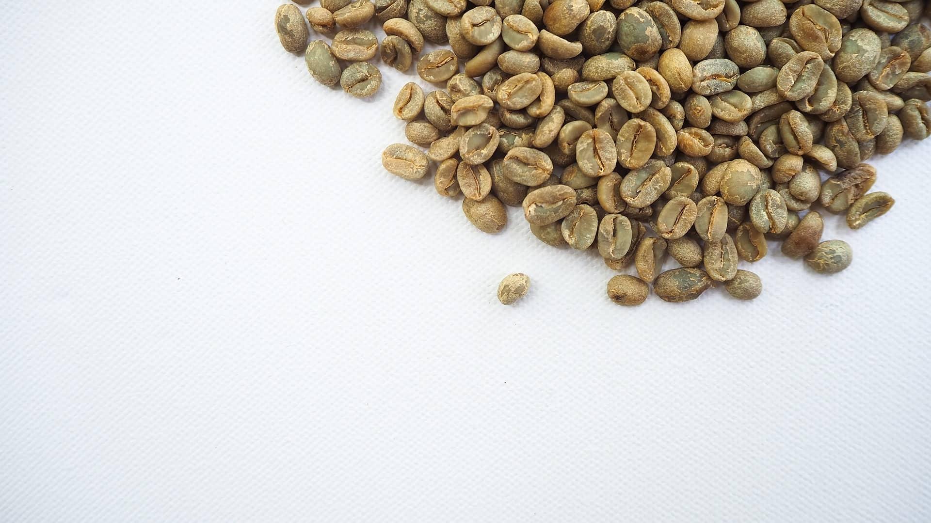 Grüner Kaffee: Test & Empfehlungen (07/20)