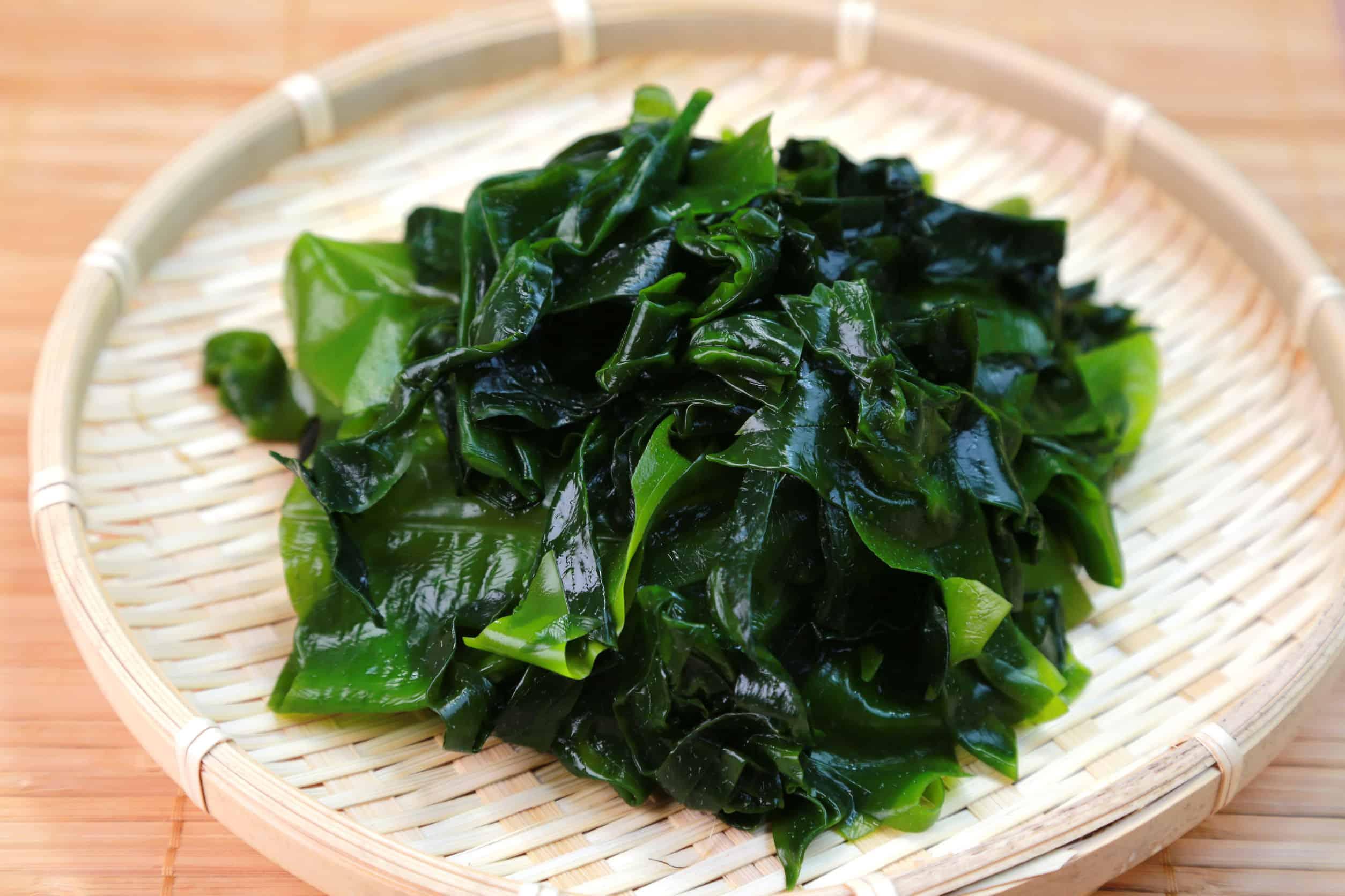 Wakame Alge: Test & Empfehlungen (08/20)