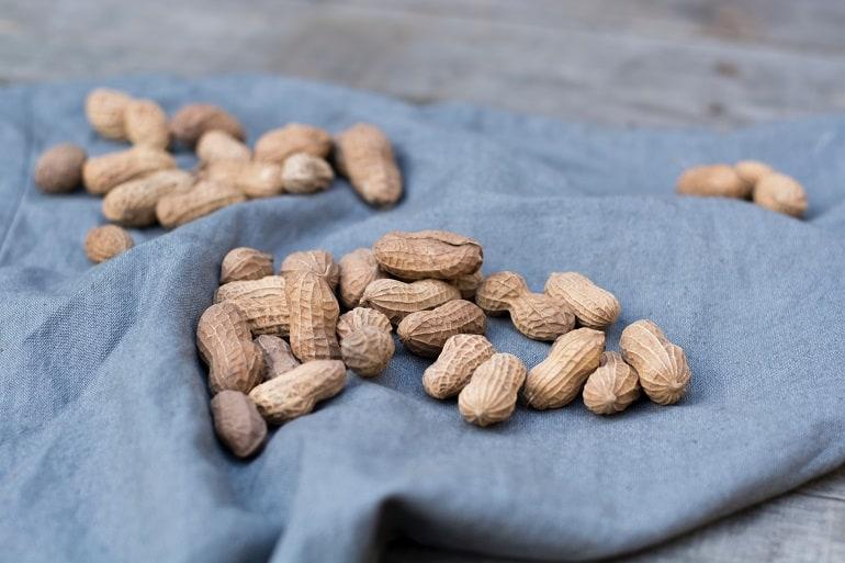 Erdnüsse Schwangerschaft