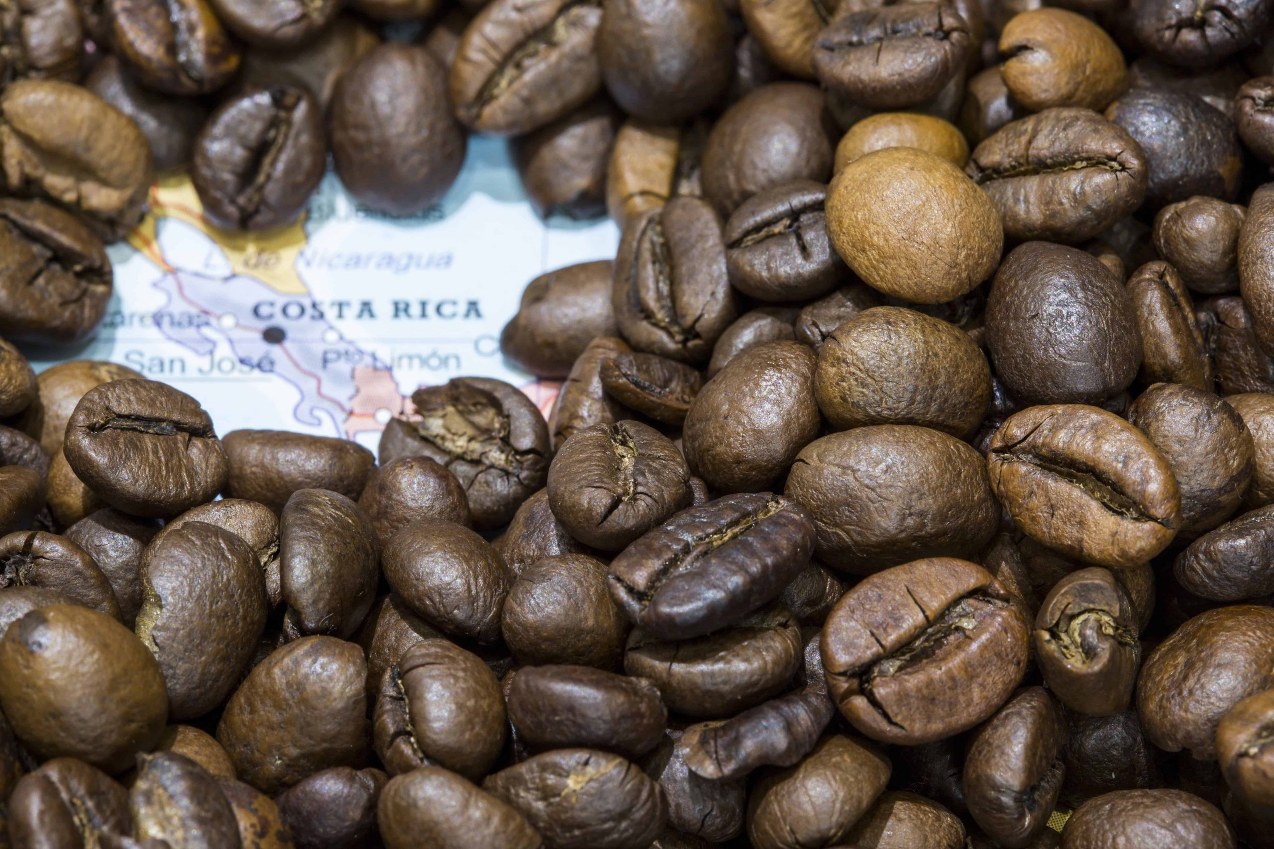 Kaffee aus Costa Rica: Test & Empfehlungen (06/21)