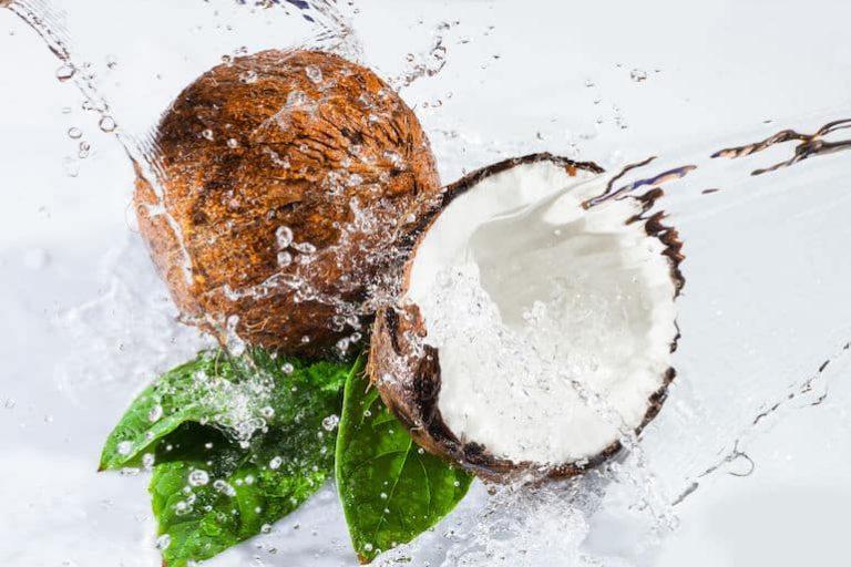 Kokosnuss mit Wasser