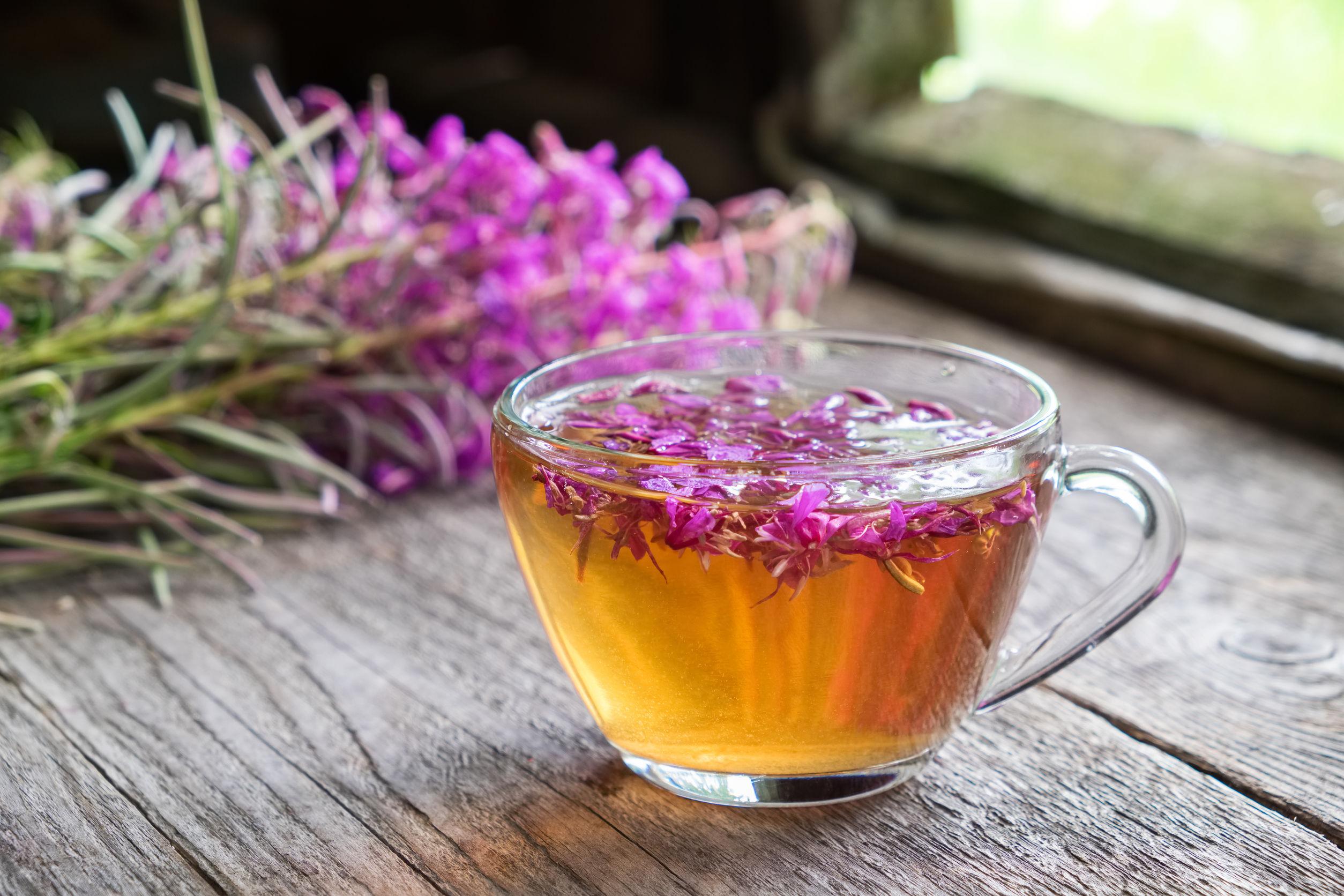Weidenröschen Tee: Test & Empfehlungen (09/21)