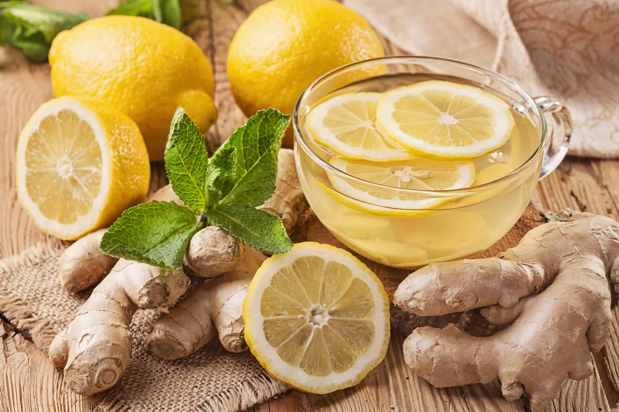 Ingwerwurzel Tee: Test & Empfehlungen (01/21)