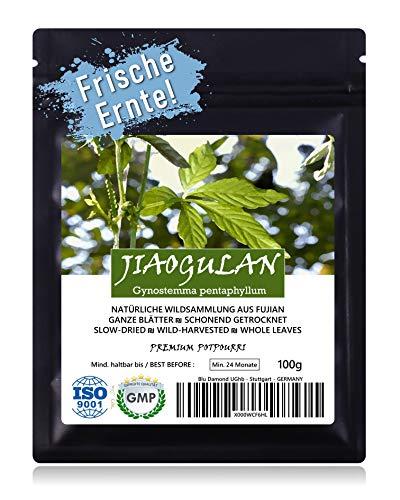 JIAOGULAN (Unsterblichkeitskraut) - Natürliche Wildsammlung | Ganze Blätter | TOP-Qualität vom Original | GMP + ISO-9001-zertifiziert | 100% rein + frisch + laborgeprüft + schonend getrocknet | 100g